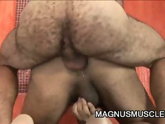 Hairy gay boys suck cock and then bang the ass