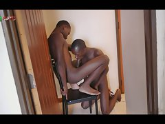 Black boys share a blowjob and bareback quickie