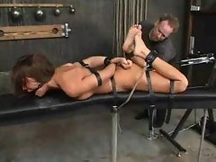 Holly Wellin Hog-Tied And Fucked Wild