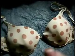 cum on polka dot bra (no audio)