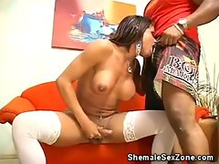 Cock Sucking TS Esmeralda